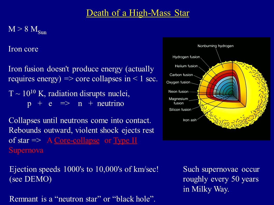 Death of a High-Mass Star M > 8 M Sun Iron core Iron fusion doesn t produce energy (actually requires energy) => core collapses in < 1 sec.
