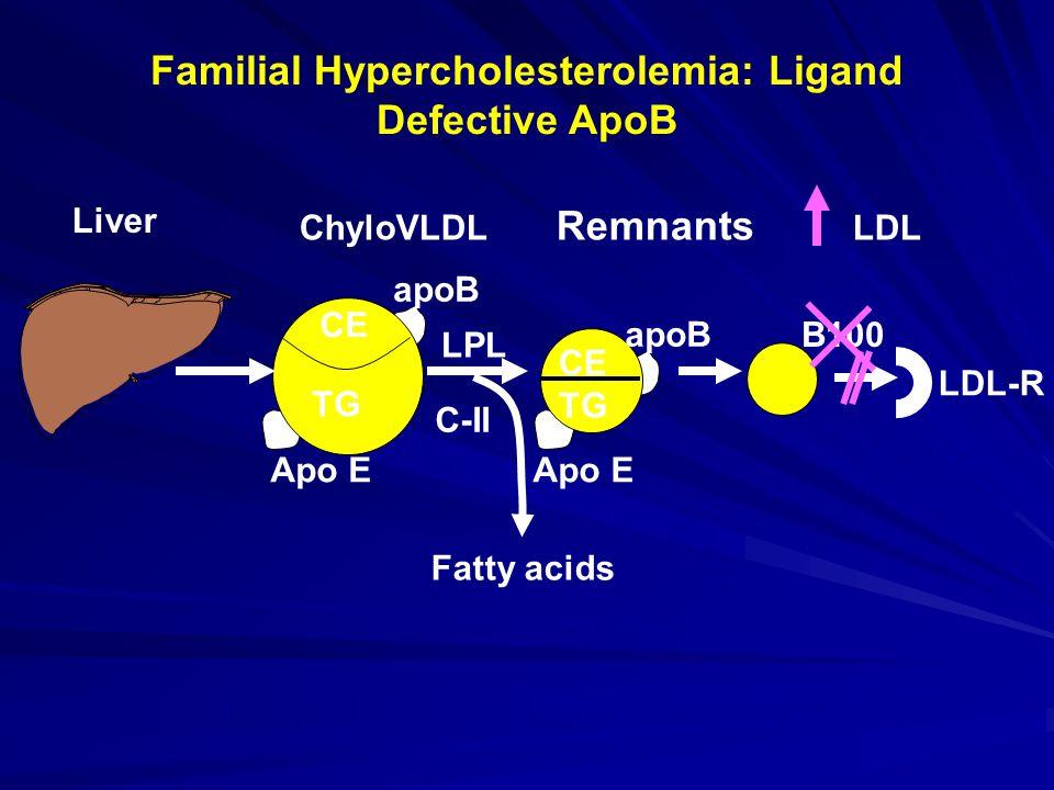 Familial Hypercholesterolemia: Ligand Defective ApoB B100 LDL-R Apo E apoB CE ChyloVLDL Remnants LDL Liver CE apoB CE TG LPL C-II Fatty acids TG