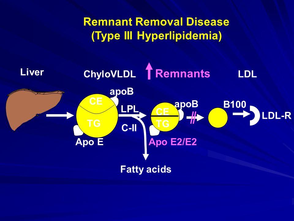 Remnant Removal Disease (Type III Hyperlipidemia) B100 LDL-R Apo EApo E2/E2 apoB CE ChyloVLDL Remnants LDL Liver CE apoB CE TG LPL C-II Fatty acids TG