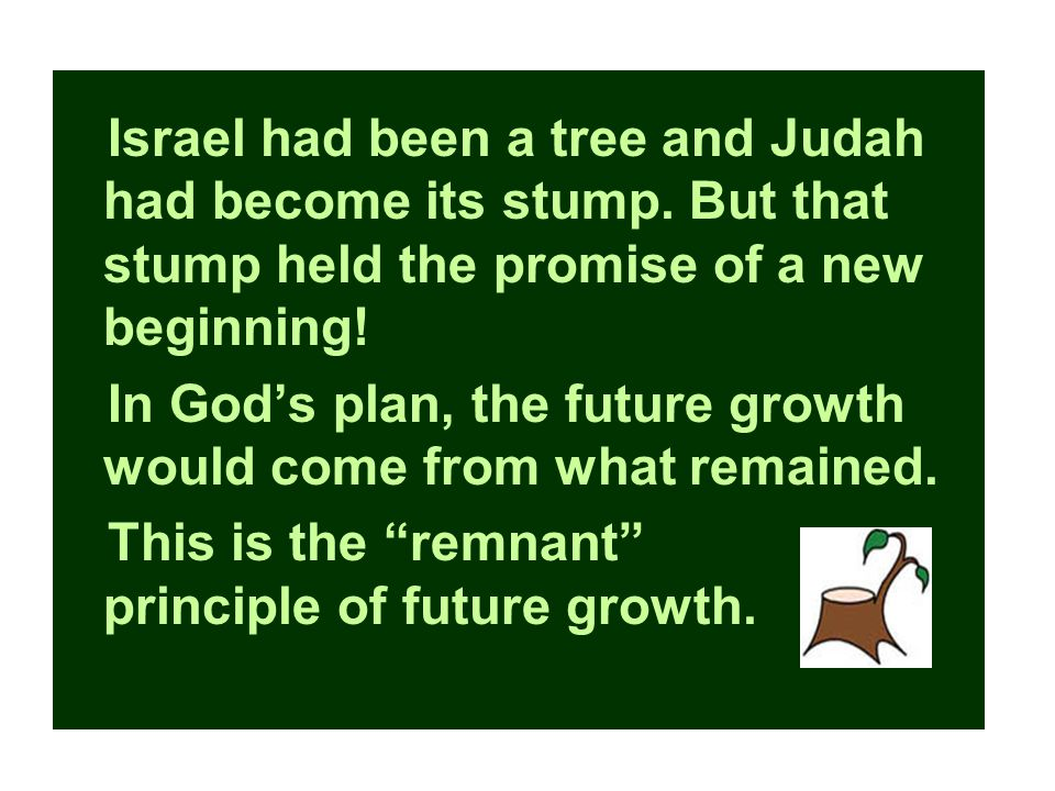 Israel had been a tree and Judah had become its stump.