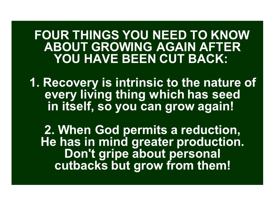FOUR THINGS YOU NEED TO KNOW ABOUT GROWING AGAIN AFTER YOU HAVE BEEN CUT BACK: 1.
