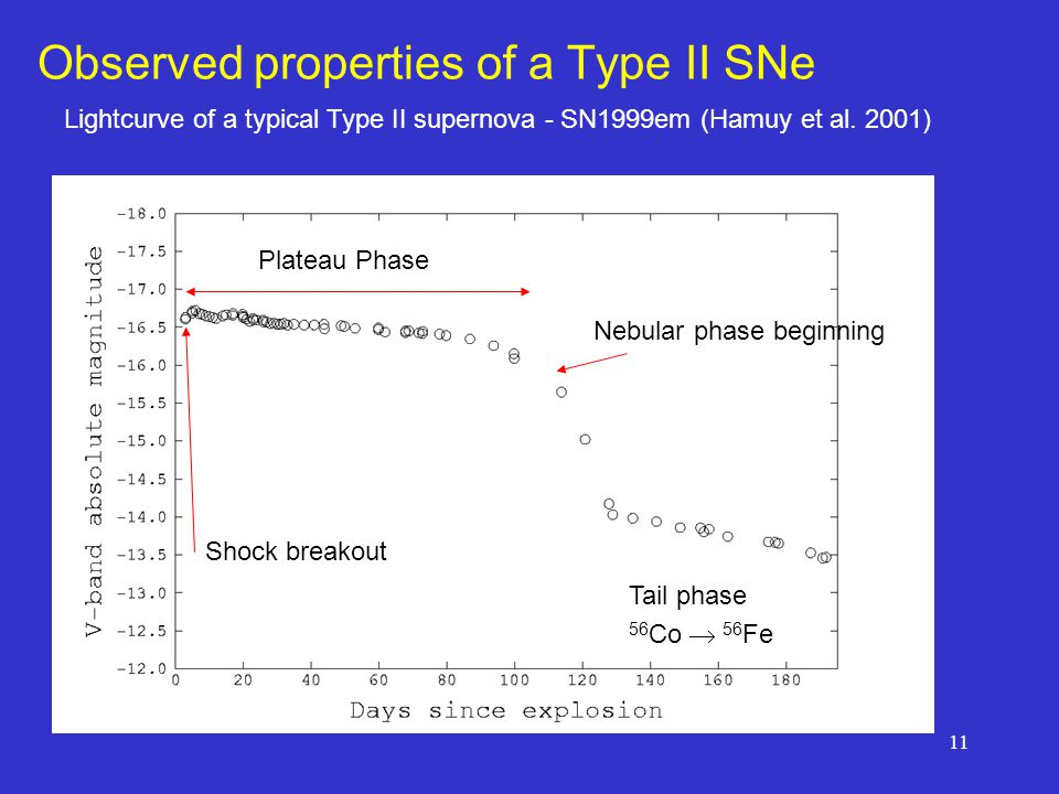 11 Observed properties of a Type II SNe Shock breakout Plateau Phase Nebular phase beginning Tail phase 56 Co  56 Fe Lightcurve of a typical Type II supernova - SN1999em (Hamuy et al.