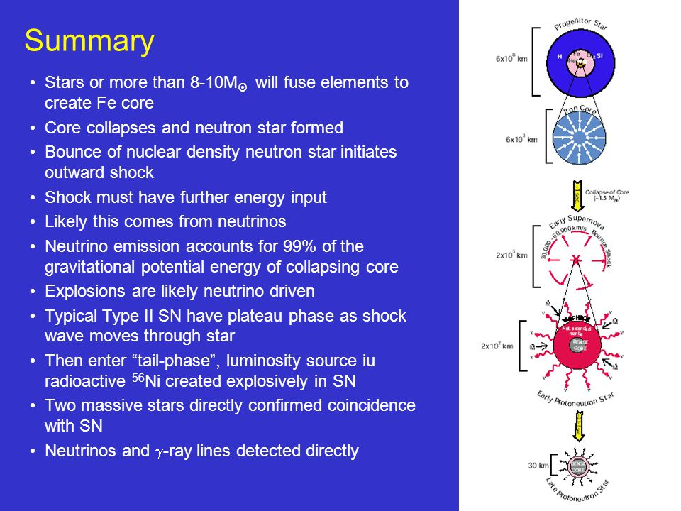 21 Summary Stars or more than 8-10M  will fuse elements to create Fe core Core collapses and neutron star formed Bounce of nuclear density neutron star initiates outward shock Shock must have further energy input Likely this comes from neutrinos Neutrino emission accounts for 99% of the gravitational potential energy of collapsing core Explosions are likely neutrino driven Typical Type II SN have plateau phase as shock wave moves through star Then enter tail-phase , luminosity source iu radioactive 56 Ni created explosively in SN Two massive stars directly confirmed coincidence with SN Neutrinos and  -ray lines detected directly