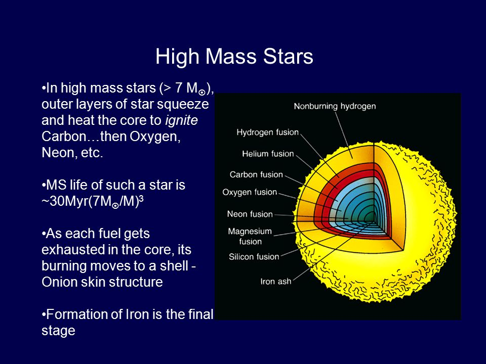 In high mass stars (> 7 M  ), outer layers of star squeeze and heat the core to ignite Carbon…then Oxygen, Neon, etc. MS life of such a star is ~30My