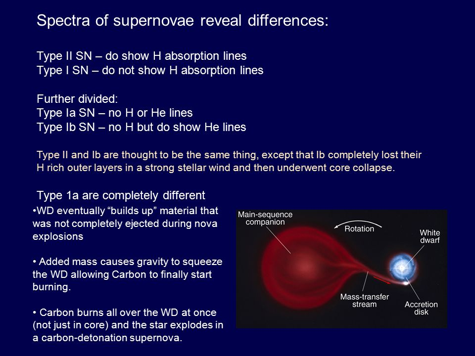 Spectra of supernovae reveal differences: Type II SN – do show H absorption lines Type I SN – do not show H absorption lines Further divided: Type Ia