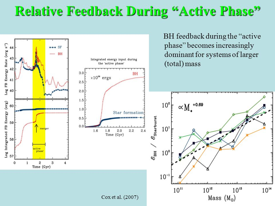 BH feedback during the active phase becomes increasingly dominant for systems of larger (total) mass Cox et al.
