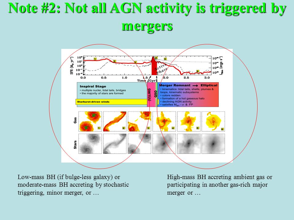 Note #2: Not all AGN activity is triggered by mergers Low-mass BH (if bulge-less galaxy) or moderate-mass BH accreting by stochastic triggering, minor merger, or … High-mass BH accreting ambient gas or participating in another gas-rich major merger or …