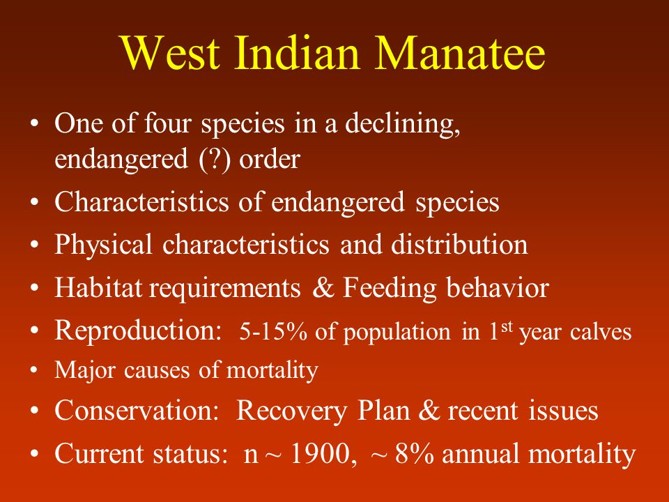 One of four species in a declining, endangered ( ) order Characteristics of endangered species Physical characteristics and distribution Habitat requirements & Feeding behavior Reproduction: 5-15% of population in 1 st year calves Major causes of mortality Conservation: Recovery Plan & recent issues Current status: n ~ 1900, ~ 8% annual mortality West Indian Manatee