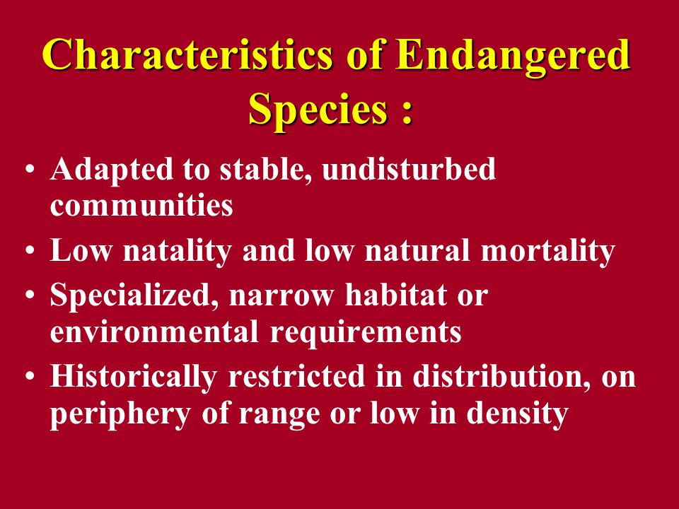 Characteristics of Endangered Species : Characteristics of Endangered Species : Adapted to stable, undisturbed communities Low natality and low natural mortality Specialized, narrow habitat or environmental requirements Historically restricted in distribution, on periphery of range or low in density