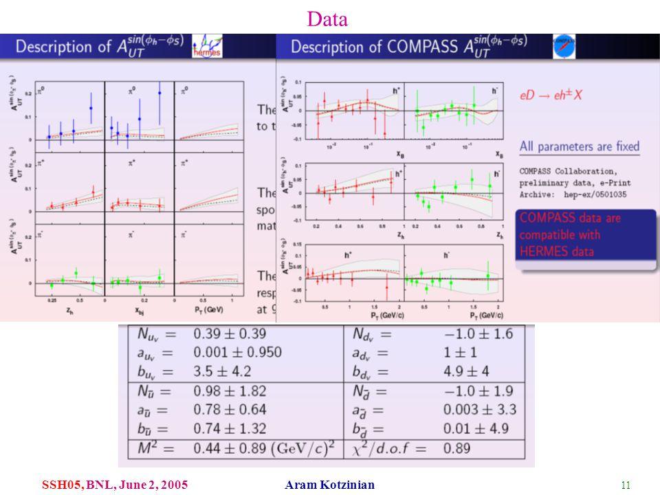 11 SSH05, BNL, June 2, 2005 Aram Kotzinian Data