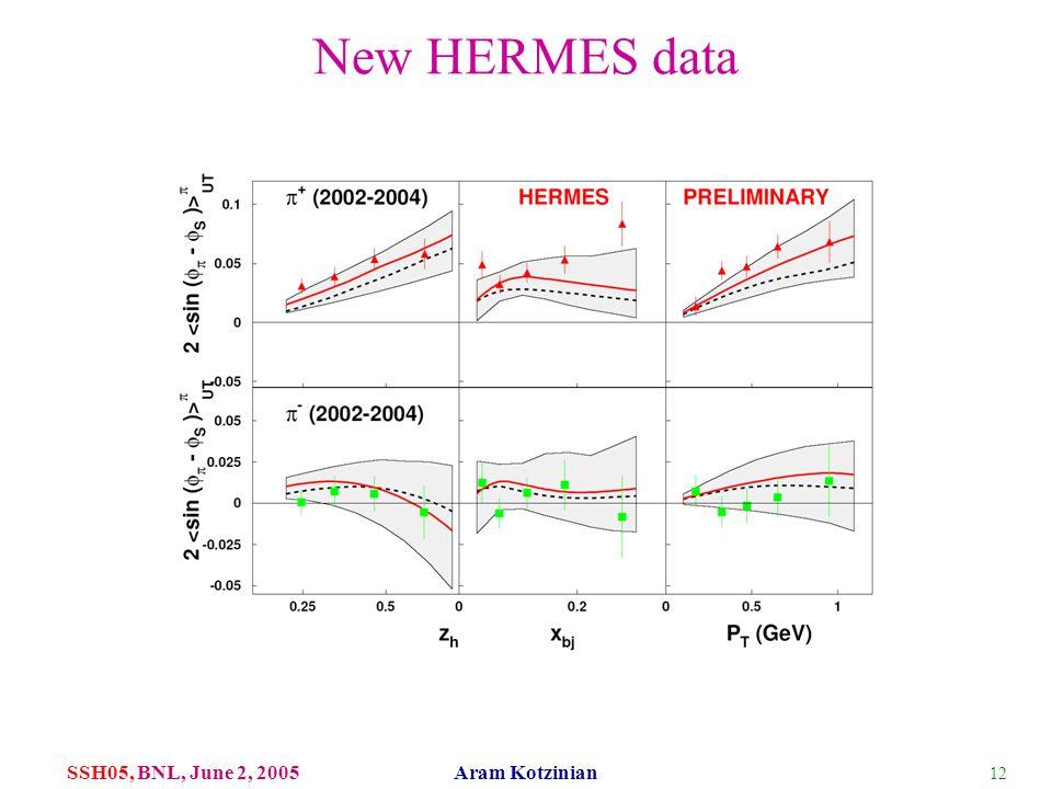 12 SSH05, BNL, June 2, 2005 Aram Kotzinian New HERMES data