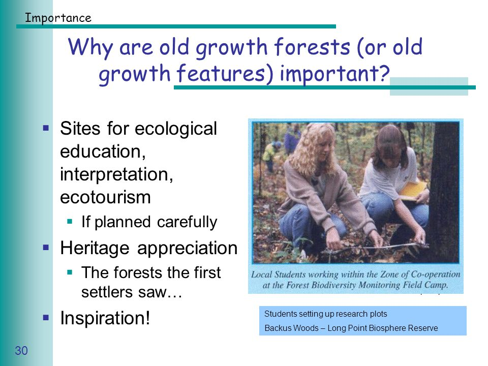 Caring for Your Land Series of Workshop 30 Why are old growth forests (or old growth features) important.