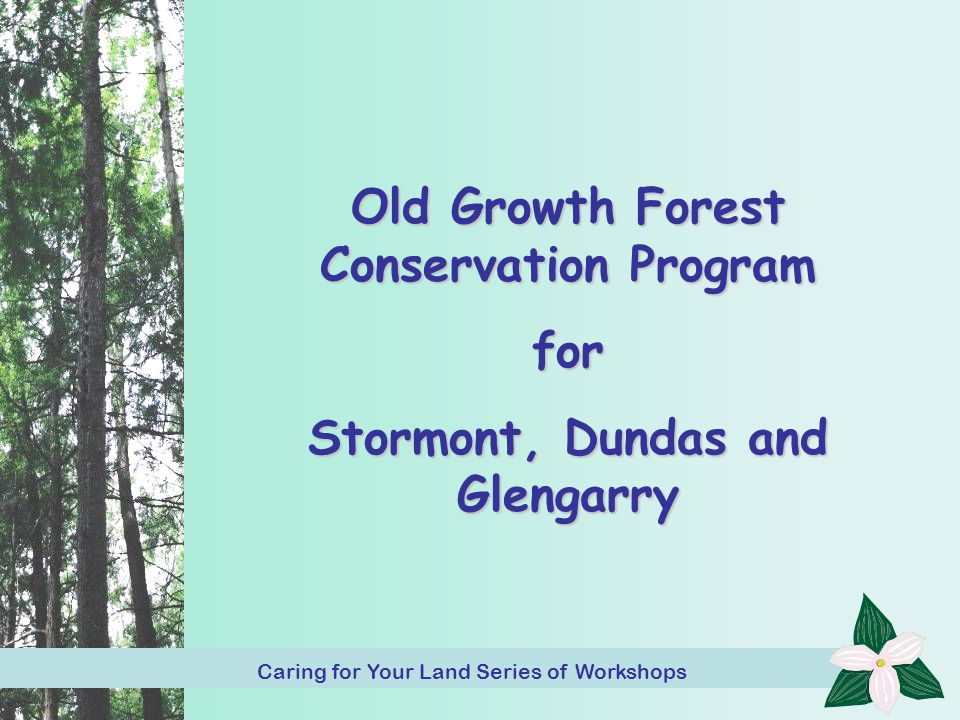 Caring for Your Land Series of Workshop 32 Old Growth Forest Conservation Program for Stormont, Dundas and Glengarry Caring for Your Land Series of Workshop Caring for Your Land Series of Workshops