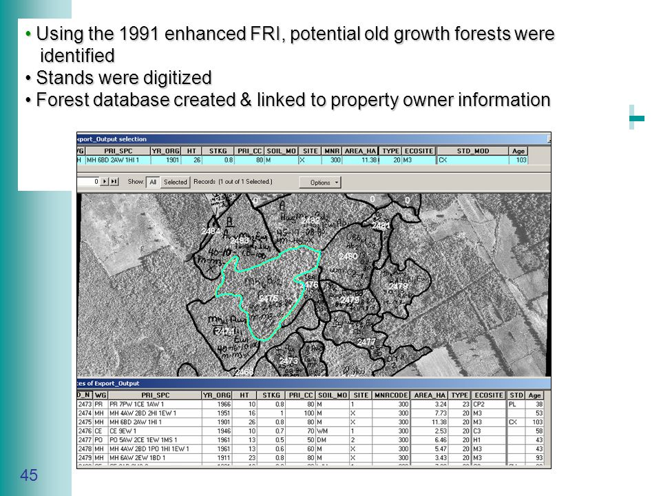 Caring for Your Land Series of Workshop 45 Using the 1991 enhanced FRI, potential old growth forests were Using the 1991 enhanced FRI, potential old growth forests were identified identified Stands were digitized Stands were digitized Forest database created & linked to property owner information Forest database created & linked to property owner information