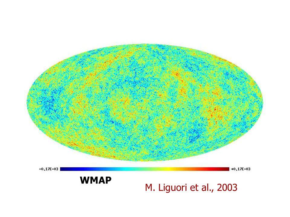 WMAP M. Liguori et al., 2003