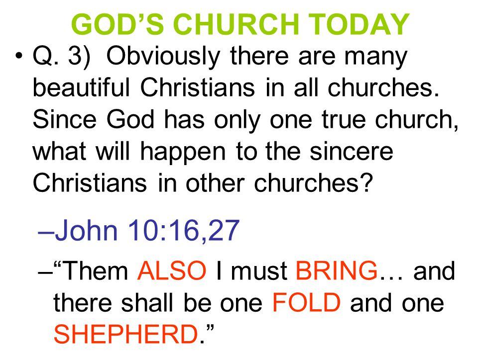 GOD'S CHURCH PERSECUTED Q.