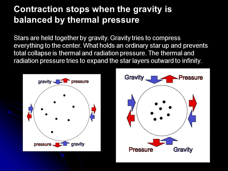 Contraction stops when the gravity is balanced by thermal pressure Stars are held together by gravity.