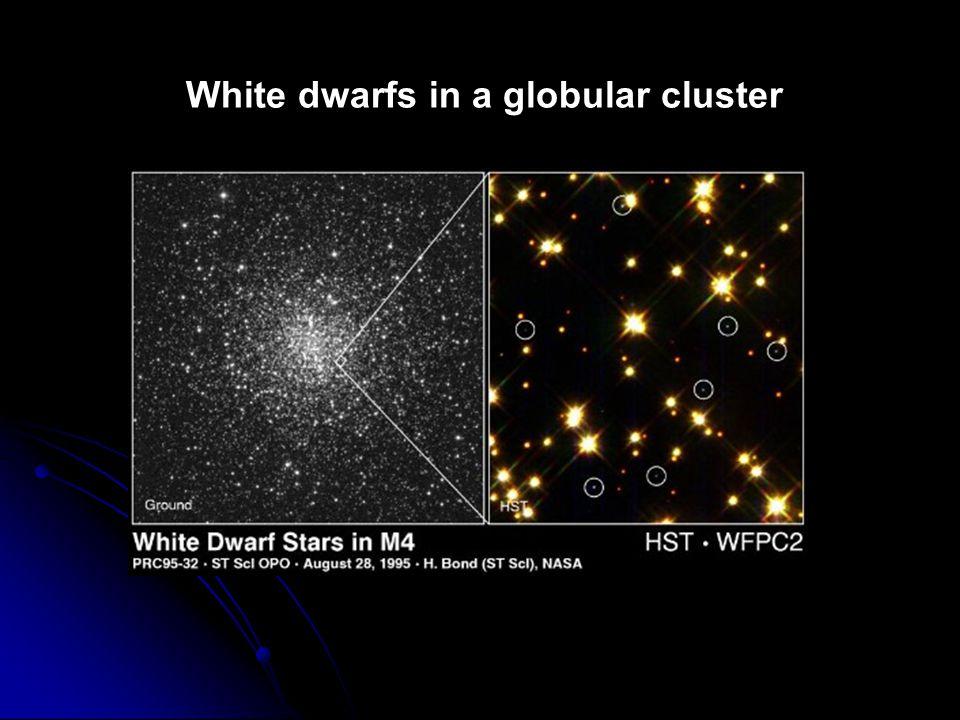White dwarfs in a globular cluster