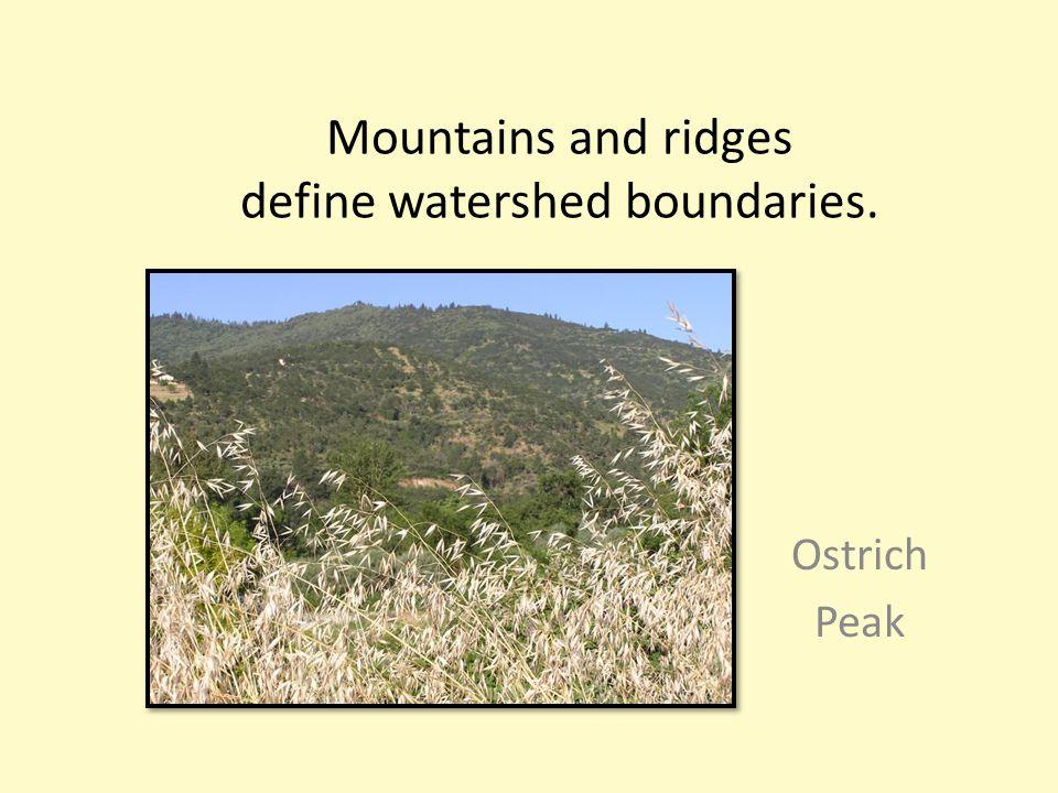 Mountains and ridges define watershed boundaries. Ostrich Peak