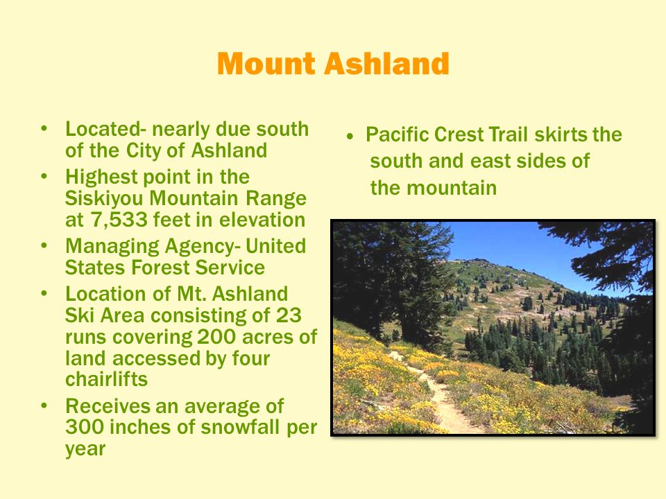 Mount Ashland Located- nearly due south of the City of Ashland Highest point in the Siskiyou Mountain Range at 7,533 feet in elevation Managing Agency