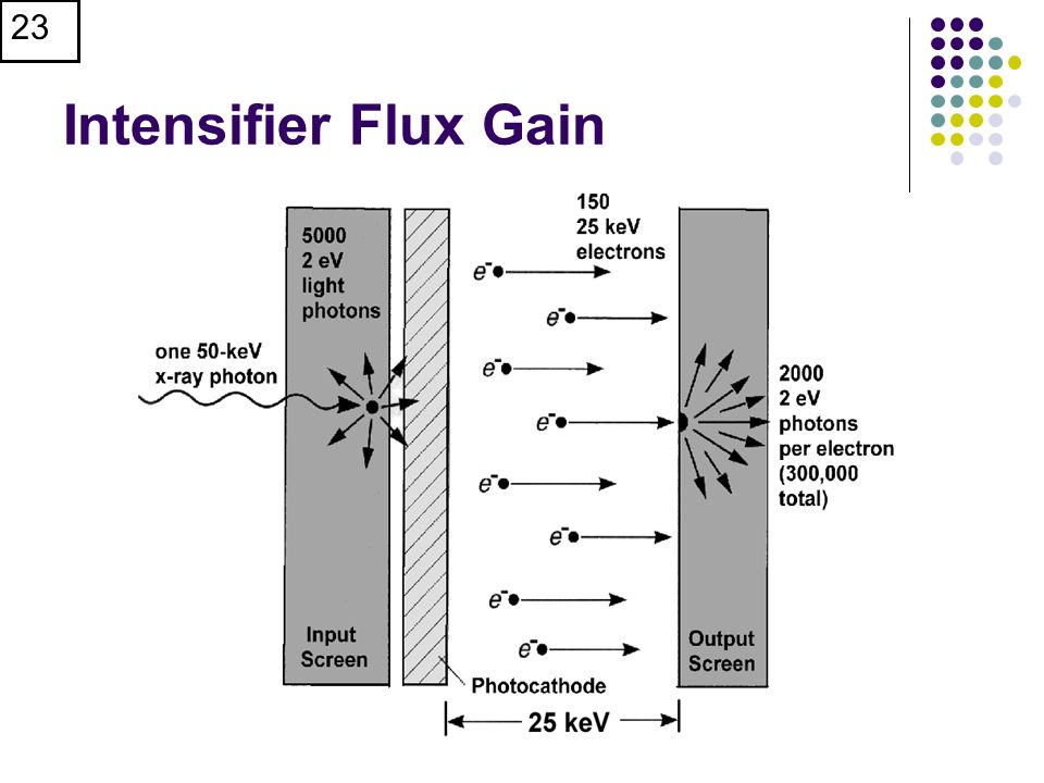 23 Intensifier Flux Gain