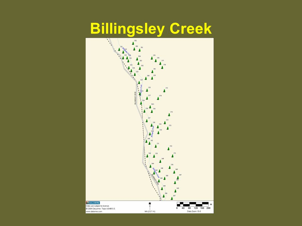 Billingsley Creek