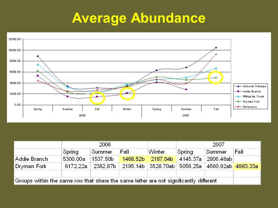 Average Abundance