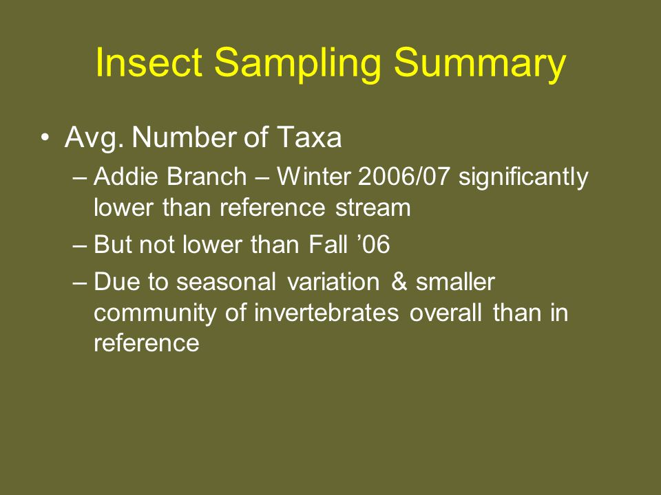 Insect Sampling Summary Avg.