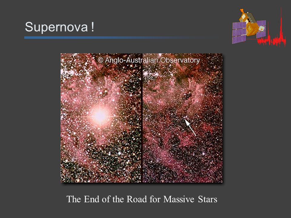 Supernova ! The End of the Road for Massive Stars