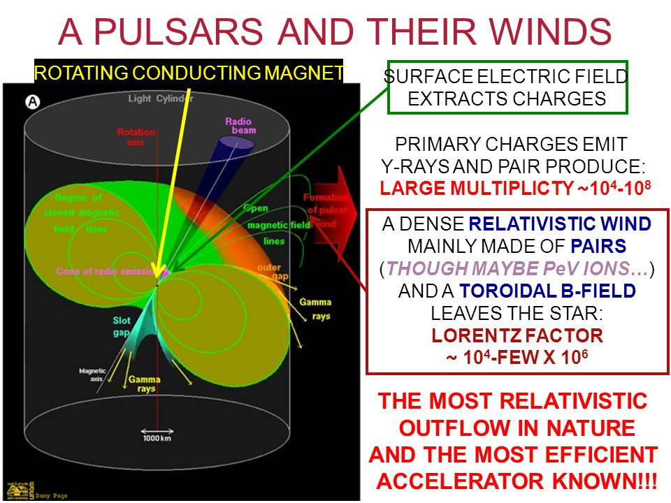 A PULSARS AND THEIR WINDS PRIMARY CHARGES EMIT Υ-RAYS AND PAIR PRODUCE: LARGE MULTIPLICTY ~ 10 4 -10 8 ROTATING CONDUCTING MAGNET SURFACE ELECTRIC FIELD EXTRACTS CHARGES A DENSE RELATIVISTIC WIND MAINLY MADE OF PAIRS (THOUGH MAYBE PeV IONS…) AND A TOROIDAL B-FIELD LEAVES THE STAR: LORENTZ FACTOR ~ 10 4 -FEW X 10 6 THE MOST RELATIVISTIC OUTFLOW IN NATURE AND THE MOST EFFICIENT ACCELERATOR KNOWN!!!