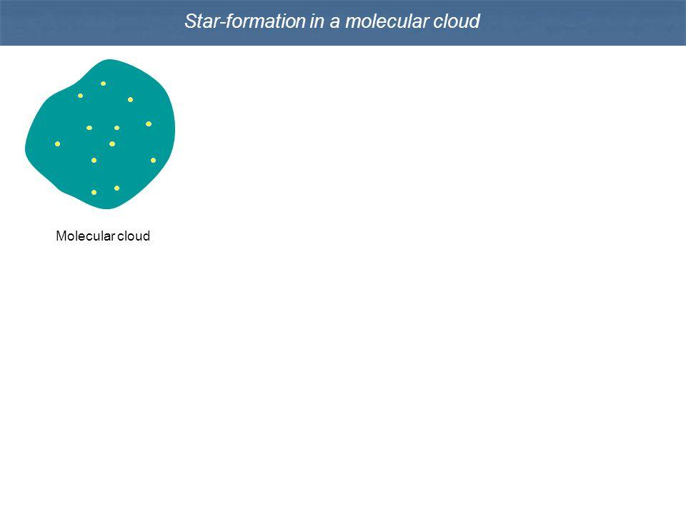 Star-formation in a molecular cloud Molecular cloud