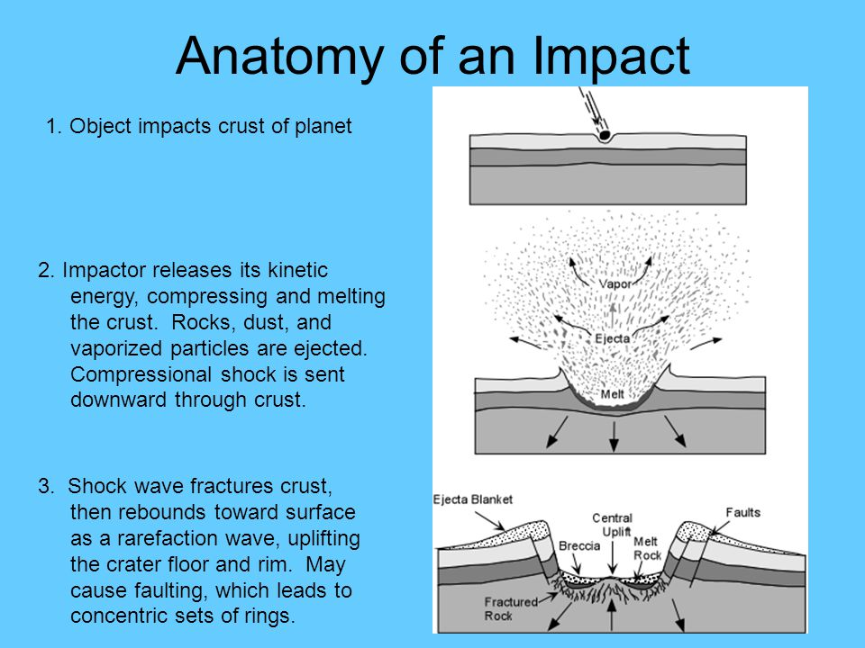 Anatomy of an Impact 1. Object impacts crust of planet 2.