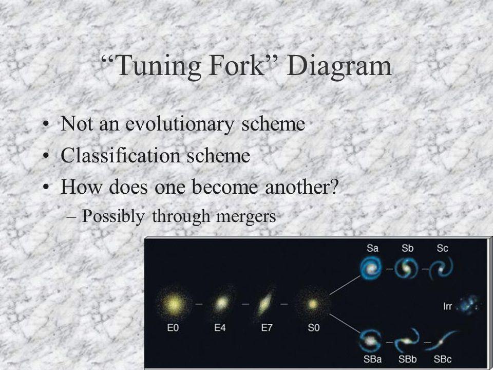 Tuning Fork Diagram Not an evolutionary scheme Classification scheme How does one become another.
