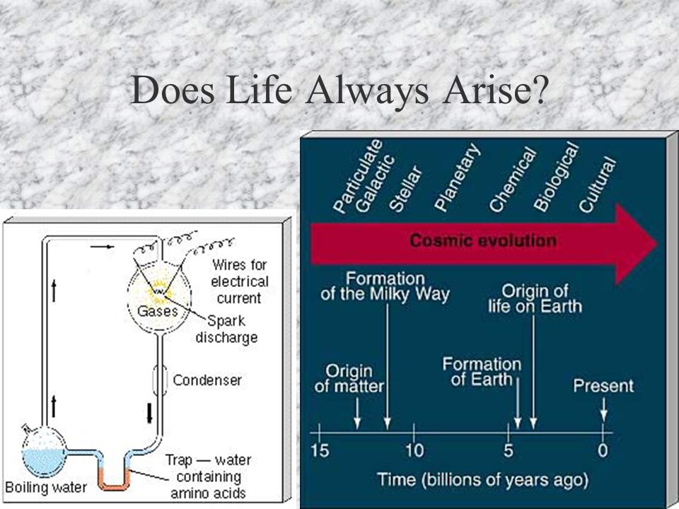 Does Life Always Arise?