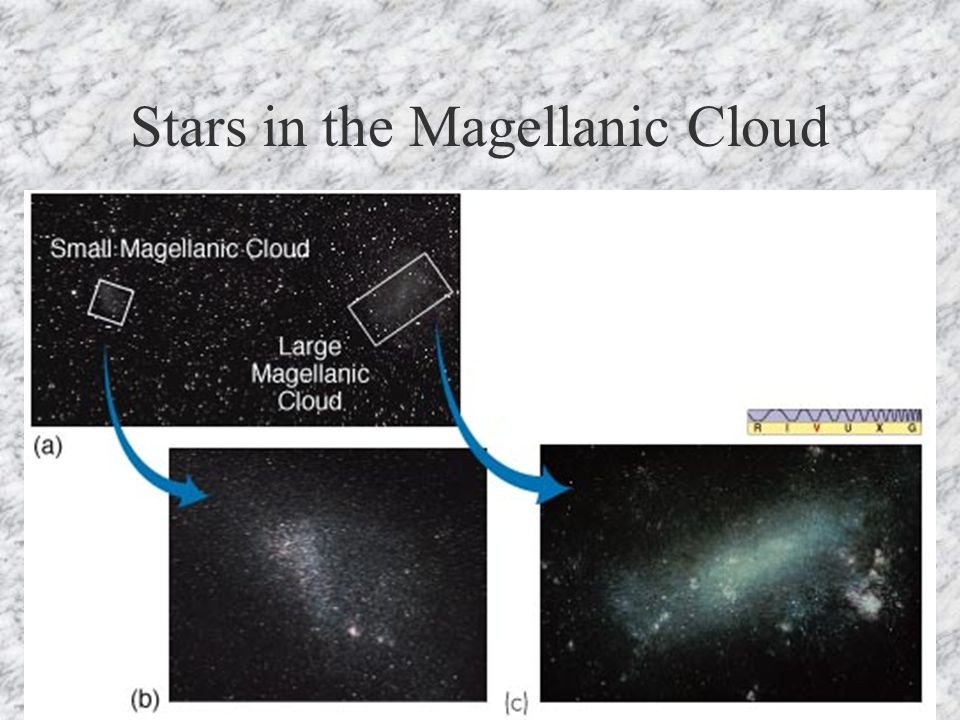 Stars in the Magellanic Cloud