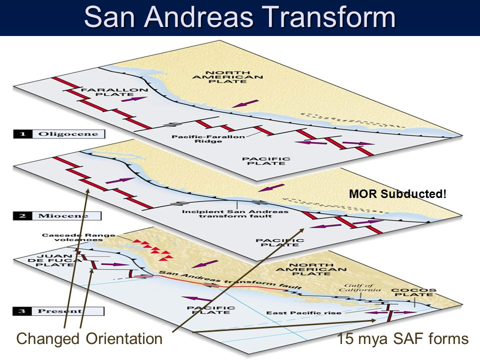 San Andreas Transform Changed Orientation15 mya SAF forms MOR Subducted!