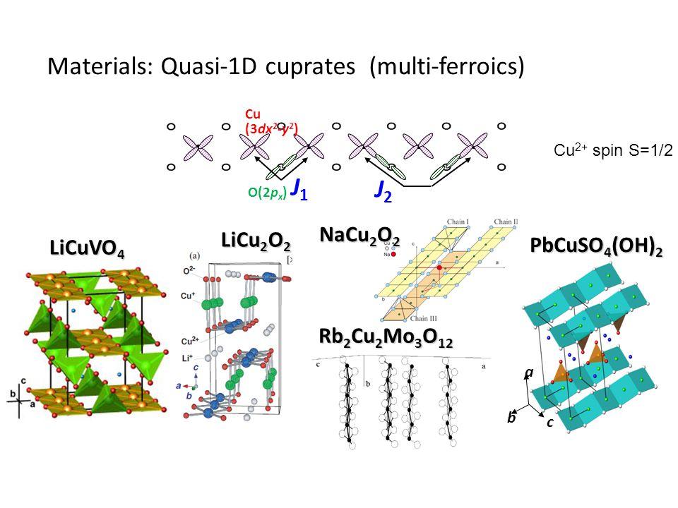 Materials: Quasi-1D cuprates (multi-ferroics) Rb 2 Cu 2 Mo 3 O 12 LiCuVO 4 LiCu 2 O 2 NaCu 2 O 2 Cu (3dx 2 -y 2 ) O(2p x ) J1J1 J2J2 PbCuSO 4 (OH) 2 b a c Cu 2+ spin S=1/2