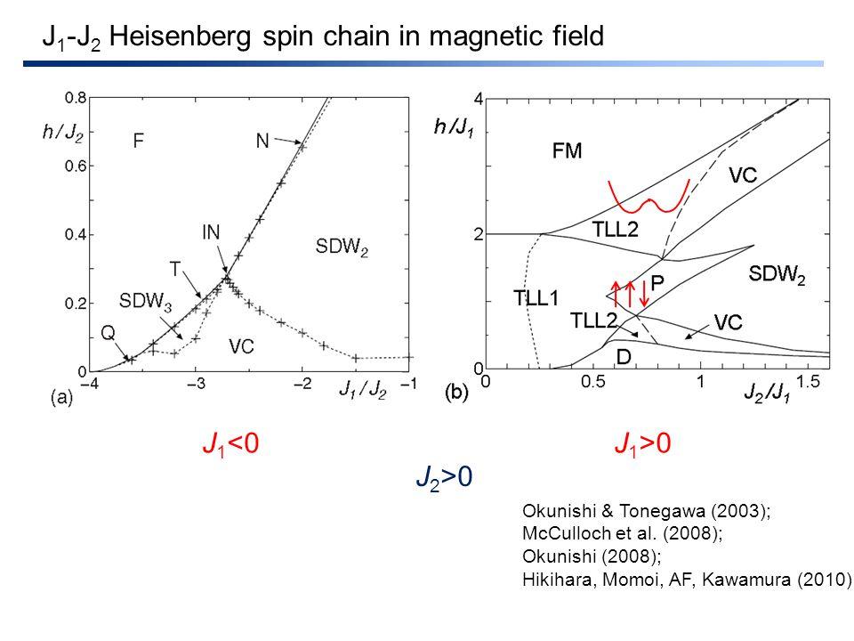 J 1 -J 2 Heisenberg spin chain in magnetic field J 1 <0J 1 >0 J 2 >0 Okunishi & Tonegawa (2003); McCulloch et al.