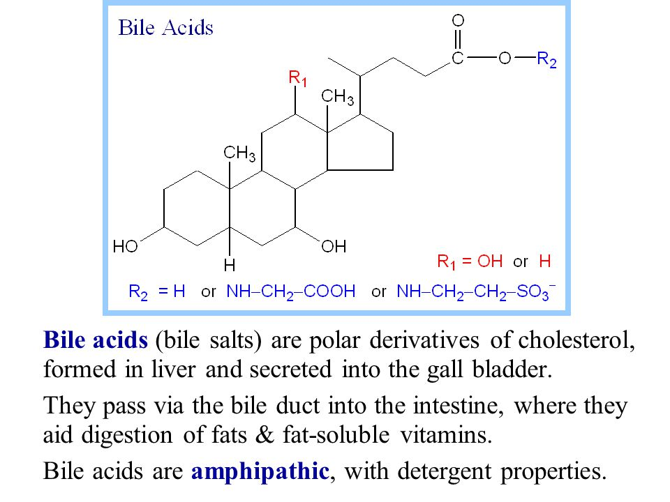 Bile acids (bile salts) are polar derivatives of cholesterol, formed in liver and secreted into the gall bladder.