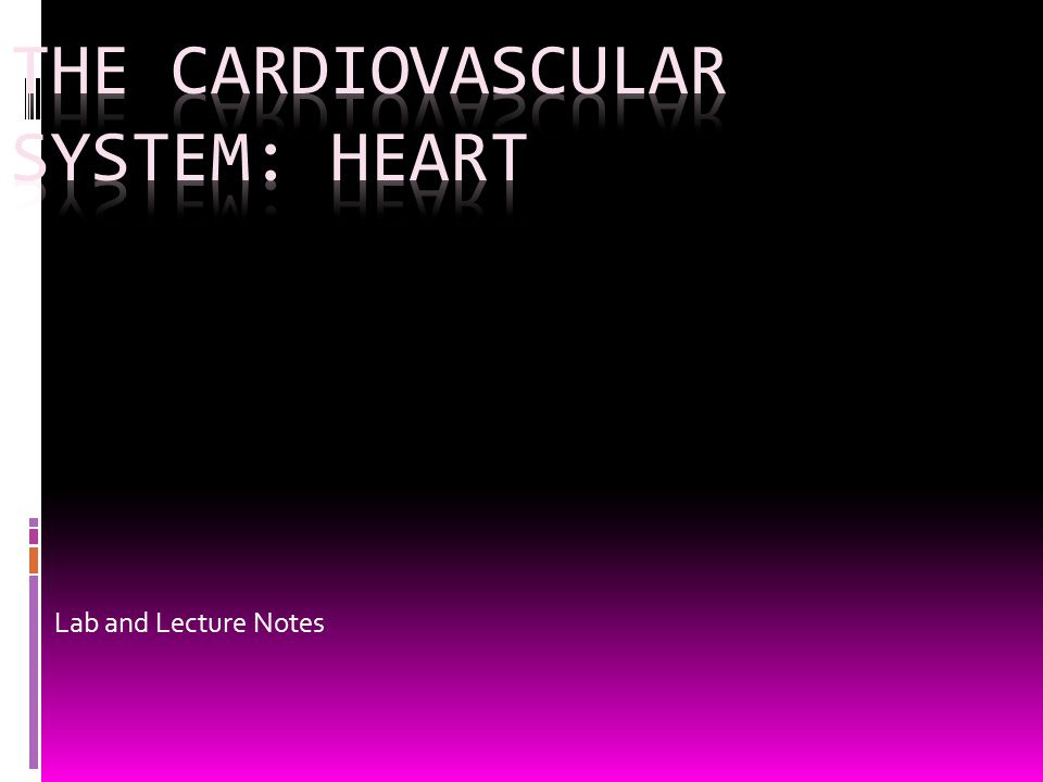 Controls- Stroke Volume (S.V.)  Degree of stretch = Frank-Starling law  Increase diastolic Volume increases strength of contraction  increased S.V.