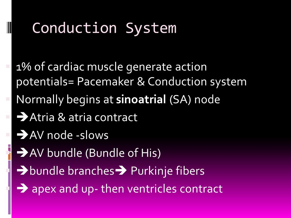 Conduction System  1% of cardiac muscle generate action potentials= Pacemaker & Conduction system  Normally begins at sinoatrial (SA) node   Atria