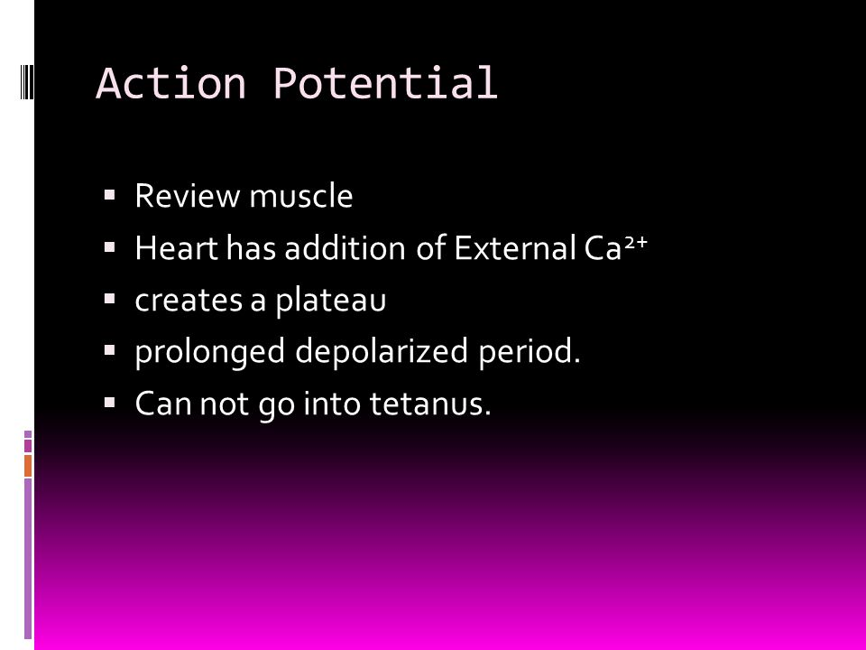 Action Potential  Review muscle  Heart has addition of External Ca 2+  creates a plateau  prolonged depolarized period.  Can not go into tetanus.