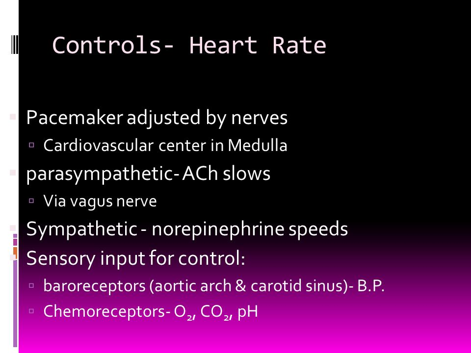Controls- Heart Rate  Pacemaker adjusted by nerves  Cardiovascular center in Medulla  parasympathetic- ACh slows  Via vagus nerve  Sympathetic -