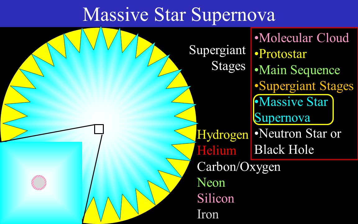 Iron Core Protons, Neutrons, Electrons Core Bounce Shock Waves Neutron Star Massive Star Supernova Molecular Cloud Protostar Main Sequence Supergiant Stages Massive Star Supernova Neutron Star or Black Hole