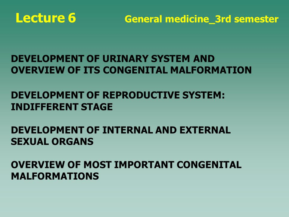 Lecture 6 General medicine_3rd semester DEVELOPMENT OF URINARY SYSTEM AND OVERVIEW OF ITS CONGENITAL MALFORMATION DEVELOPMENT OF REPRODUCTIVE SYSTEM: