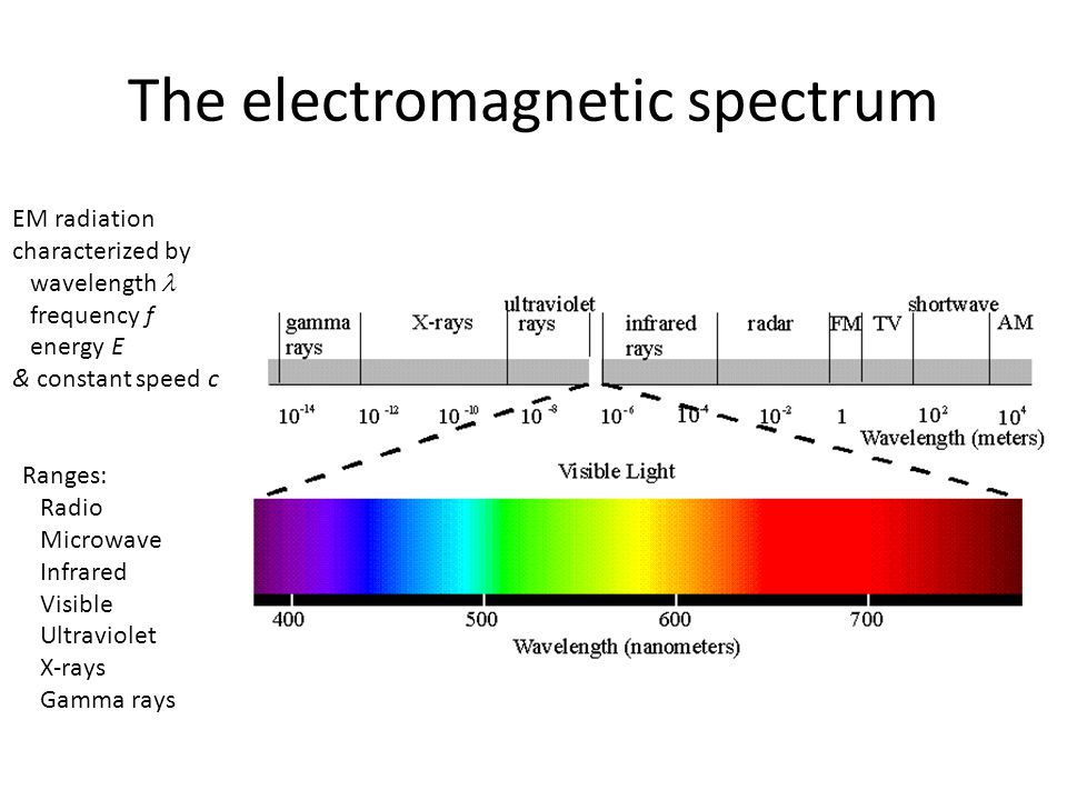 The electromagnetic spectrum EM radiation characterized by wavelength frequency f energy E & constant speed c Ranges: Radio Microwave Infrared Visible Ultraviolet X-rays Gamma rays