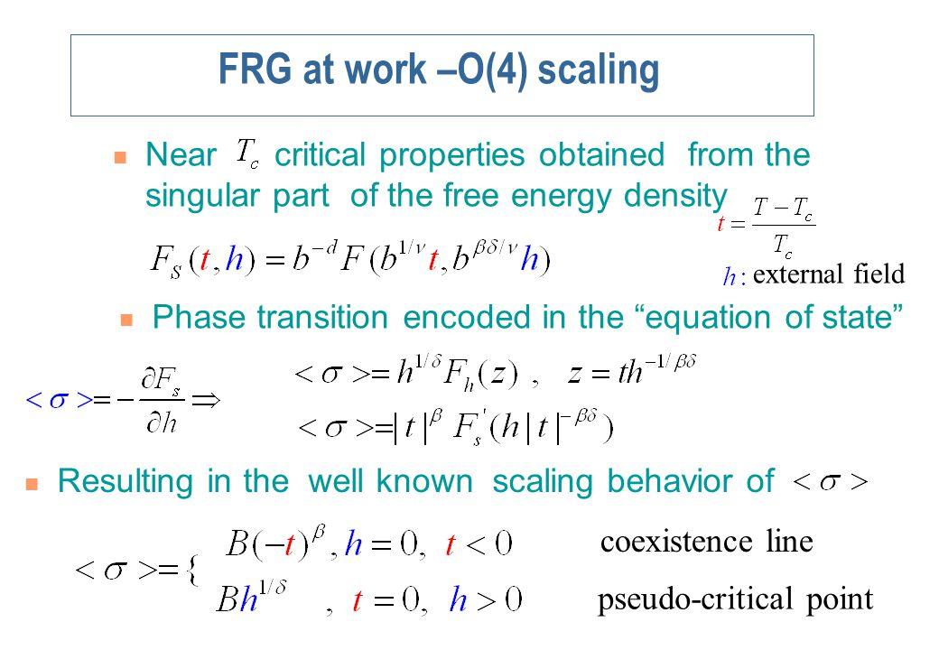 FRG-Scaling of an order parameter in QM model The order parameter shows scaling.