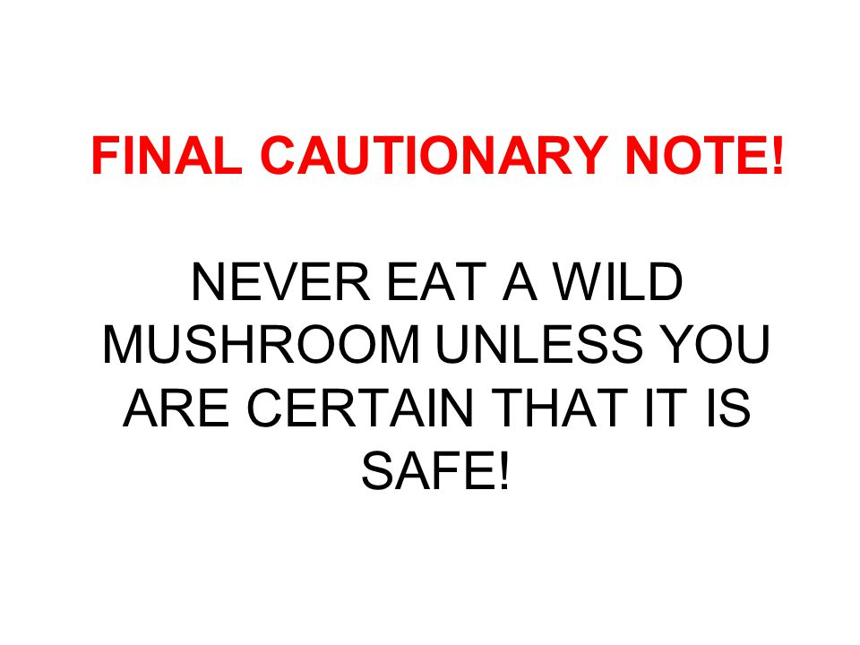 FINAL CAUTIONARY NOTE! NEVER EAT A WILD MUSHROOM UNLESS YOU ARE CERTAIN THAT IT IS SAFE!