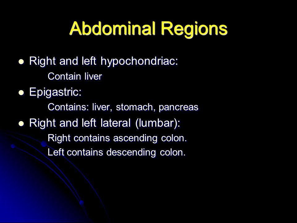 Linea Alba Median raphe Median raphe Extends from xiphoid to pubic symphysis.