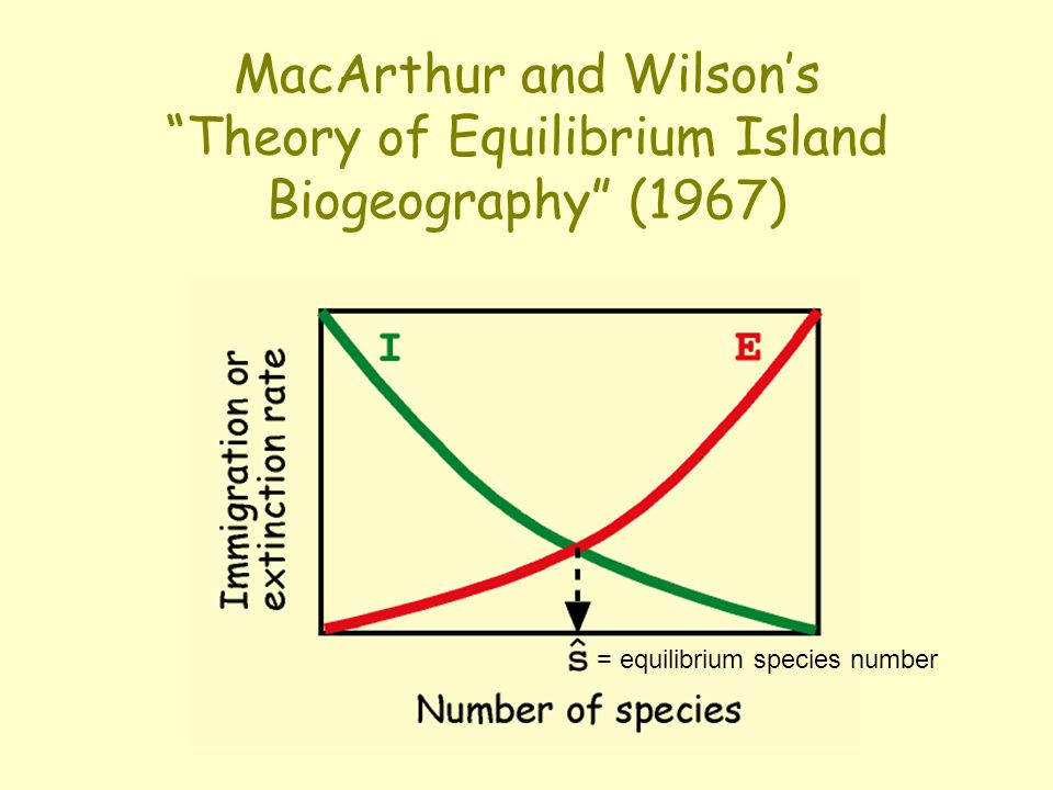 MacArthur and Wilson's Theory of Equilibrium Island Biogeography (1967) = equilibrium species number